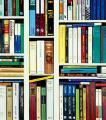 Still Life 25/Ⅶ (Books)